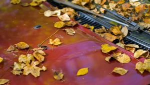Five keys to protect the car paint in autumn